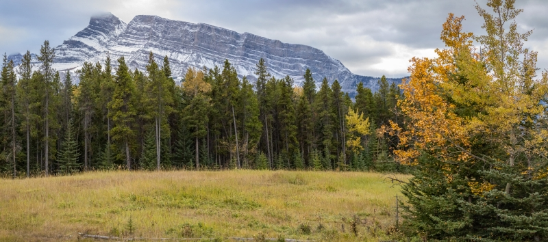 Mt.-Rundle-Panorama